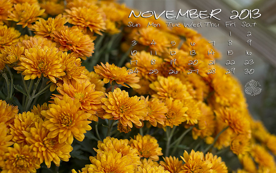 MUMS NOV 2013 BLOG